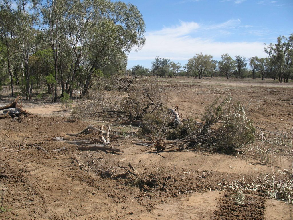 Land clearing & Aboriginal heritage destruction 6