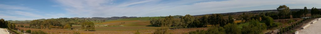Panoramic View from Kellermeister Winery in the Barossa Valley