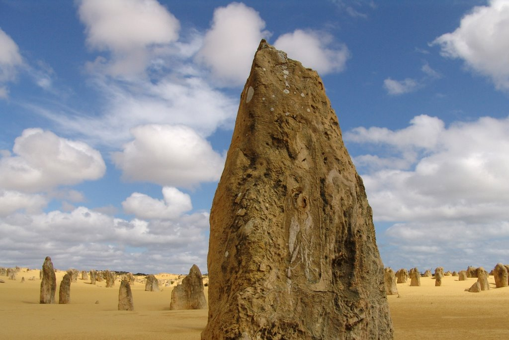 The Pinnacles/ Western Territory / Australia