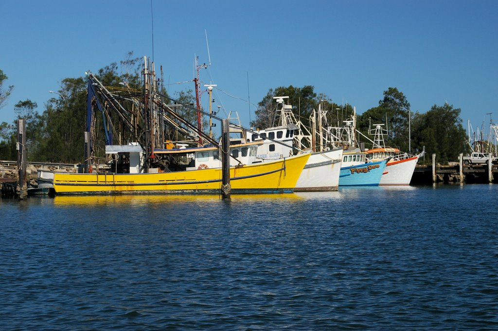 Fishing Fleet, Yamba