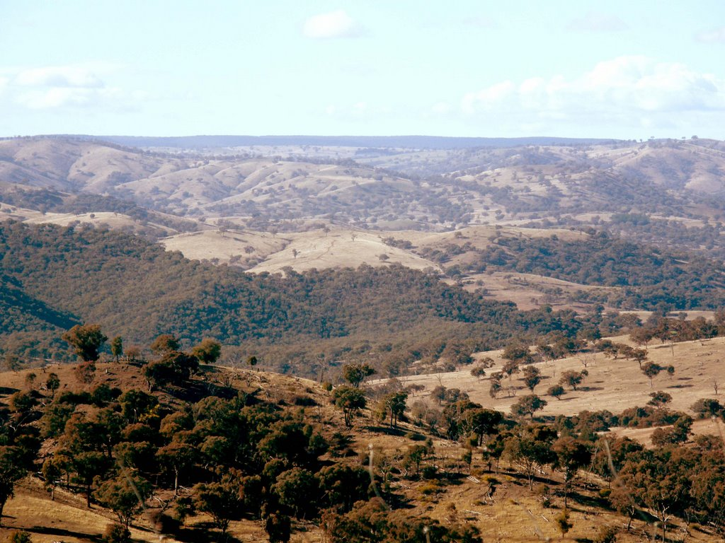 Scenery - Hill End - Sofala, NSW