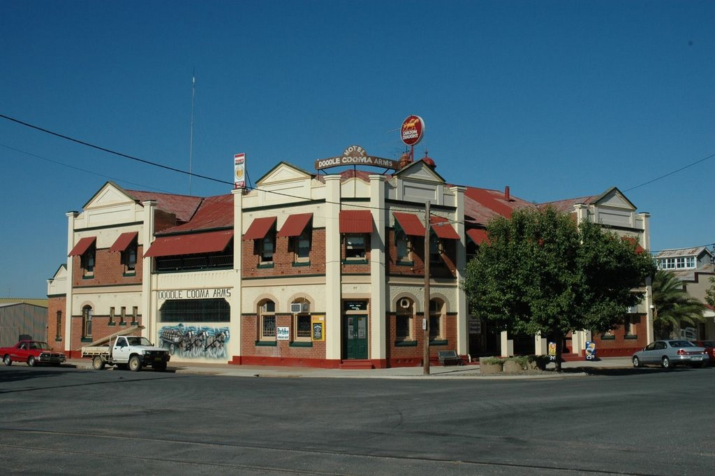 Doodle Cooma Arms, Henty