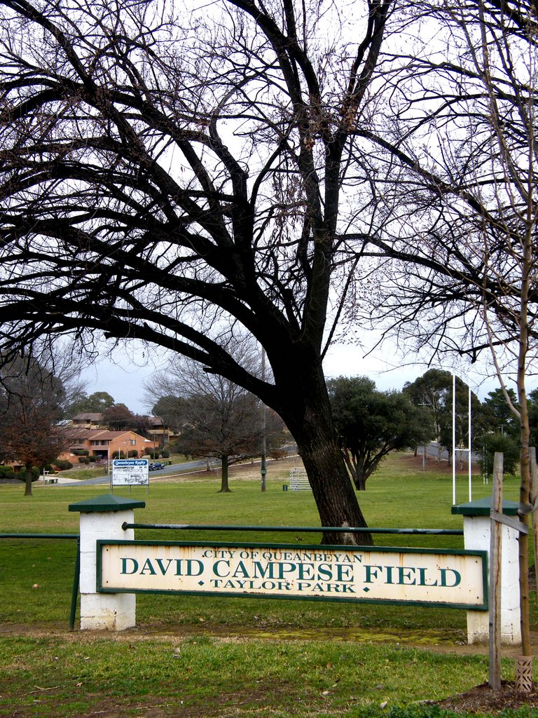 David Campese Field - Queanbeyan, NSW