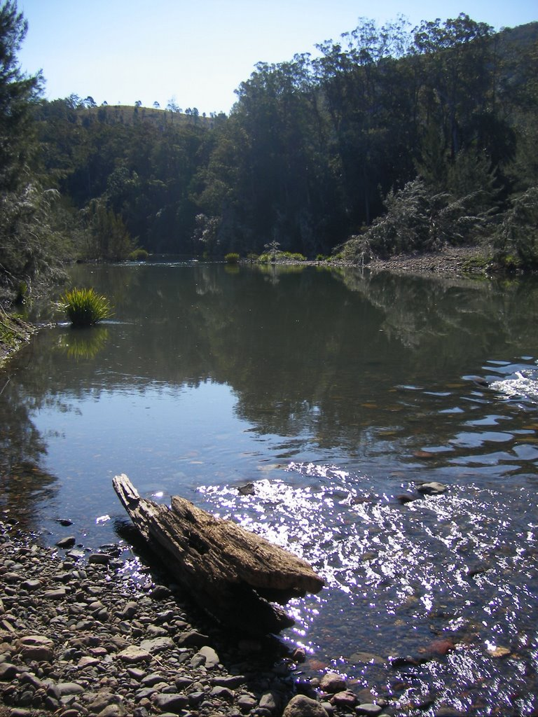 hastings river at elembourgh reserve