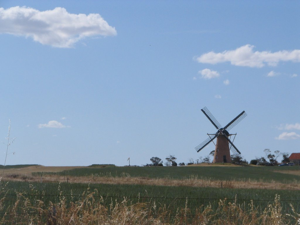 The Lily, dutch windmill in Stirling Range