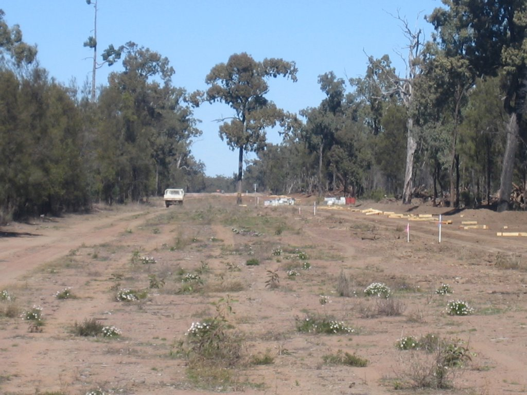 Condamine Forest Gas Easement