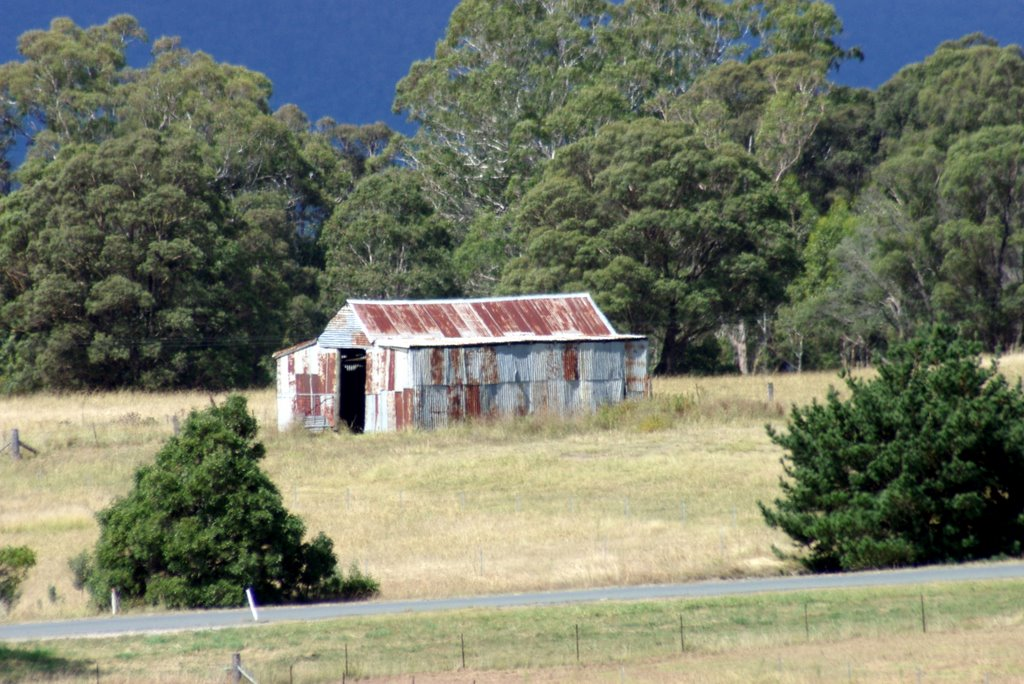 Old Shed - Majors Creek - NSW