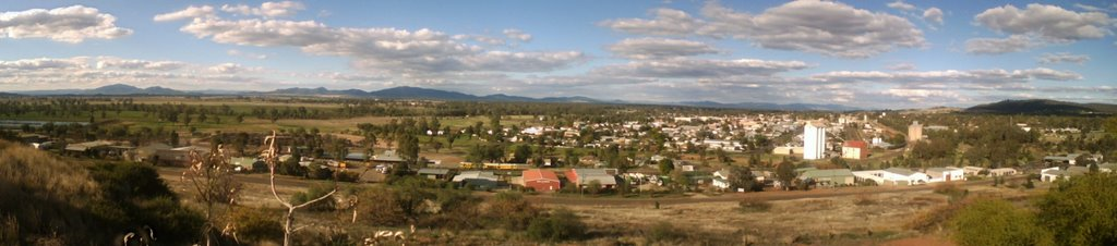 Gunnedah from Pensioners Hill Lookout