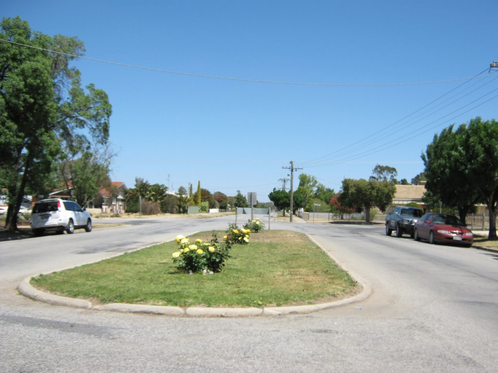 Median Strip in Cohuna