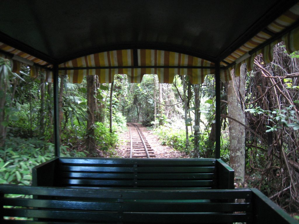 Railway at the Big Pineapple