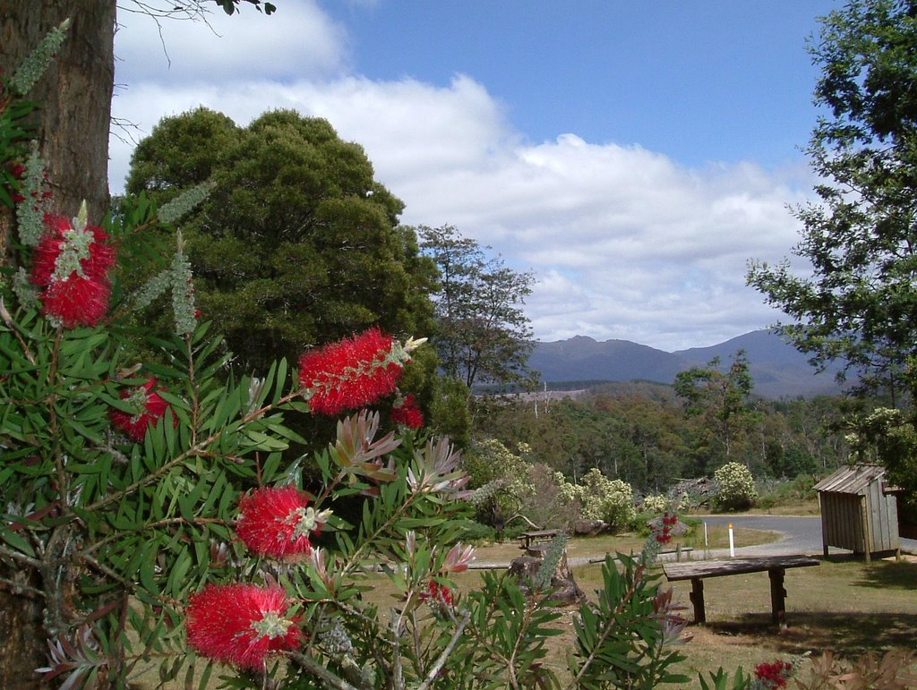 Leven Canyon Pic-Nic Area ......   101