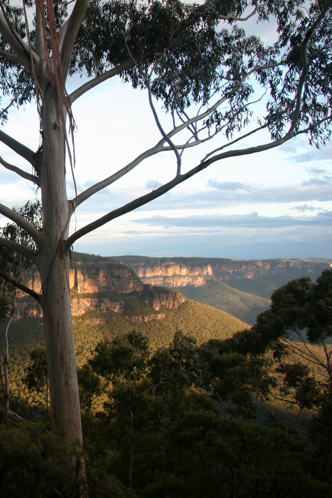 Blue Mountains from Honeymoon Lookout, Katoomba, NSW, Australia