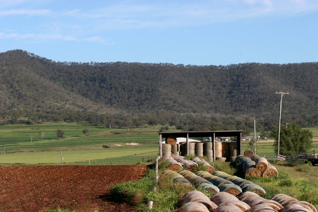 Glengallan Valley, eastern Darling Downs, Queensland
