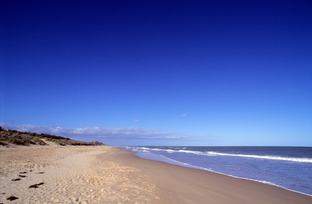 Woodside Beach, VIC, AUS