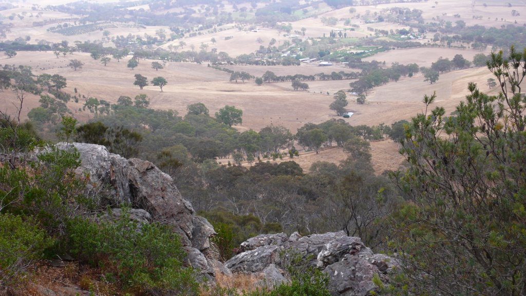 Mount Barker view 30653