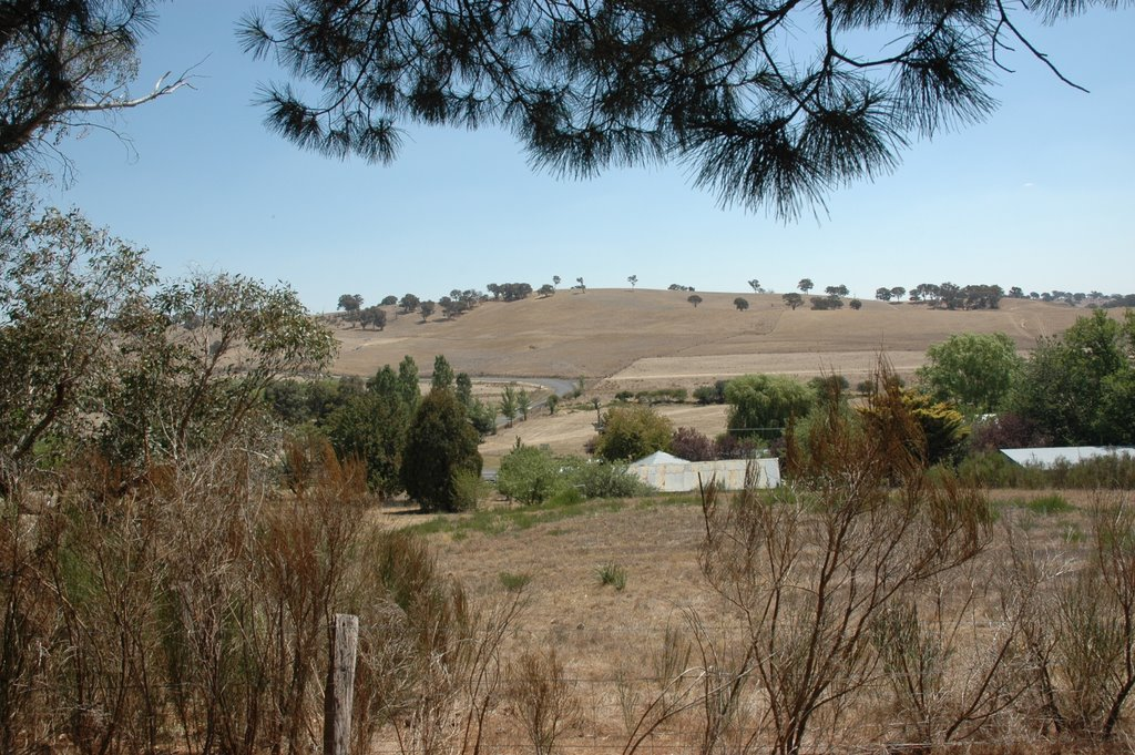 Looking South to Woodville Road, Binda, NSW