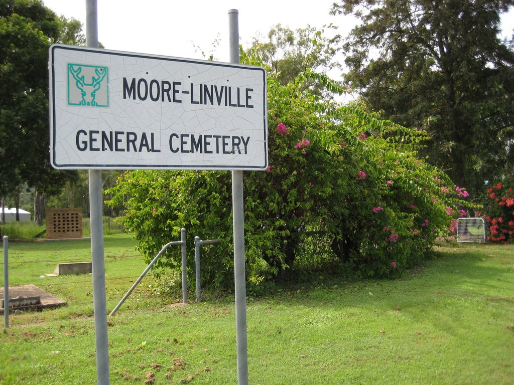 Moore Linville cemetery