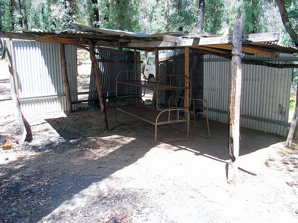 Fultons Creek Shelter