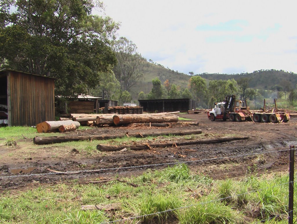 Sawmill Yard Linville Queensland