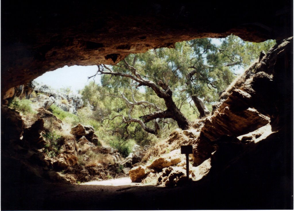 Exit from Stockyard Gully Cave