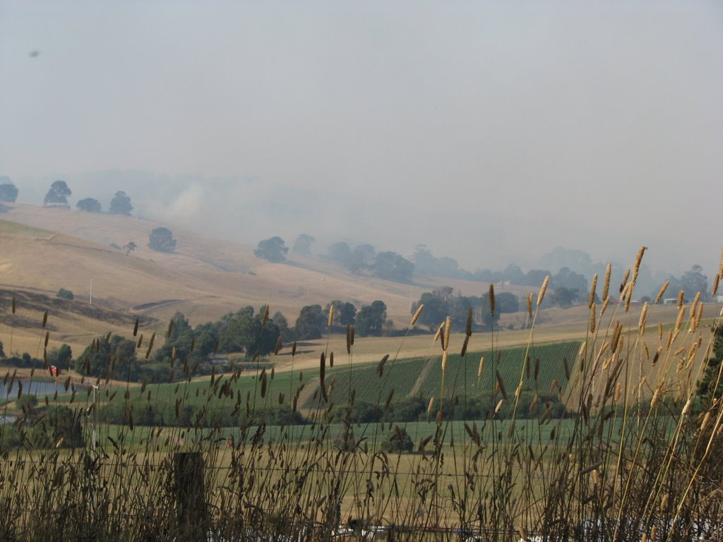Mirboo Nth Fires 2009
