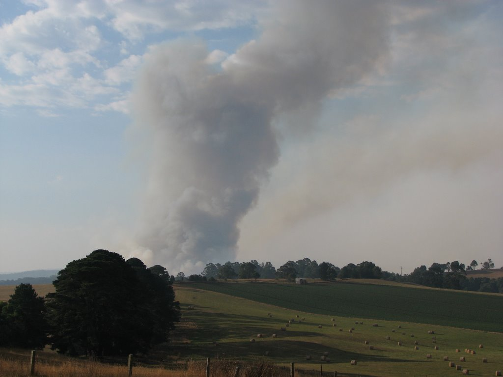 Mirboo North Fires 2009