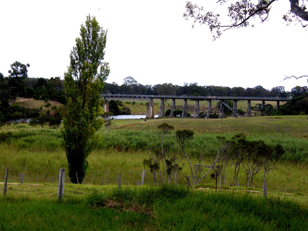 Rail Bridge - Nicholson