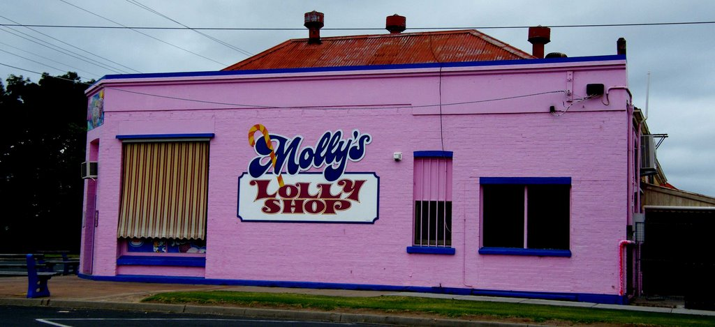 The Molly Lolly Shop
