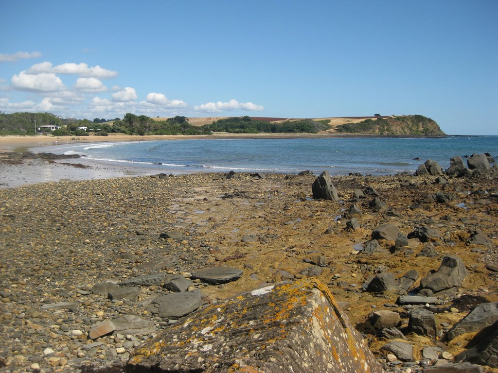 Devonport - Coles beach