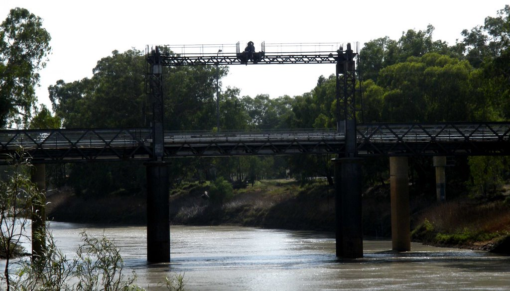 Darling River Bridge - Wilcannia