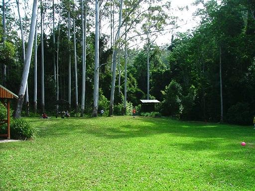 Woolgoolga Creek Picnic Area