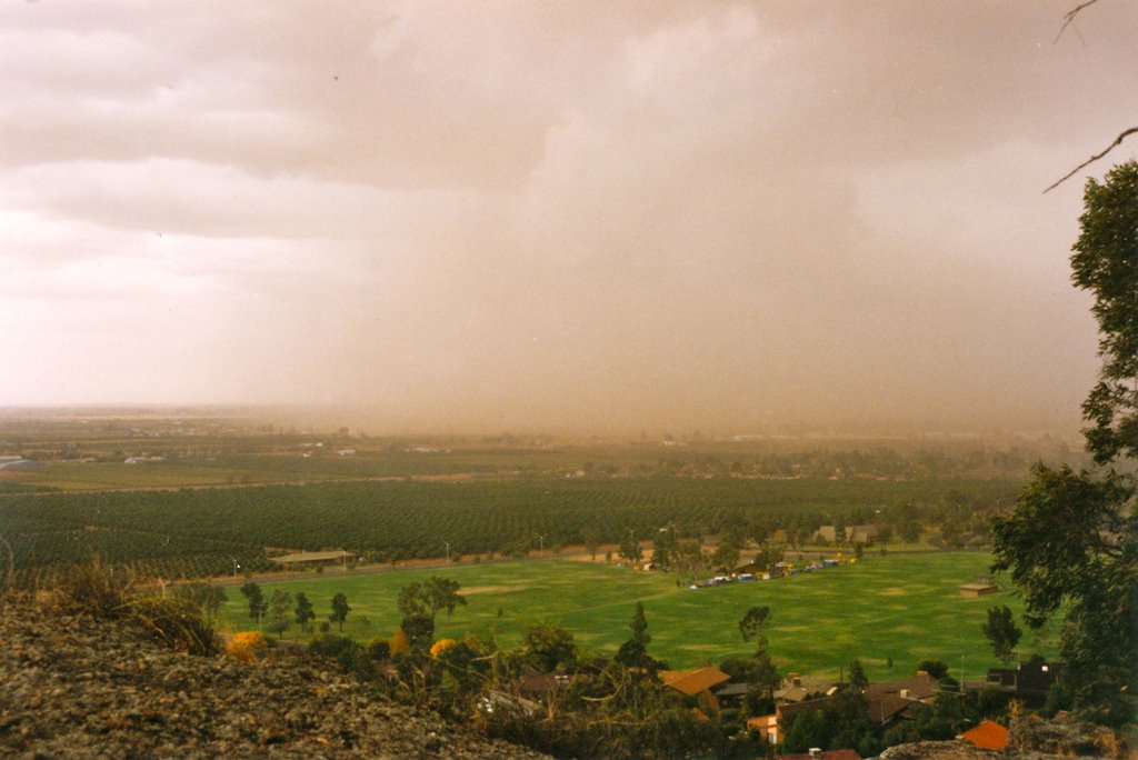 Dust Storm over Griffith