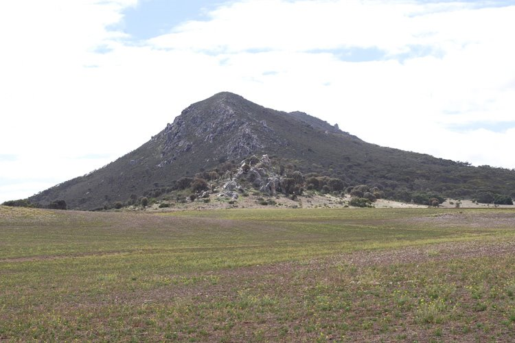 Mount Greenly