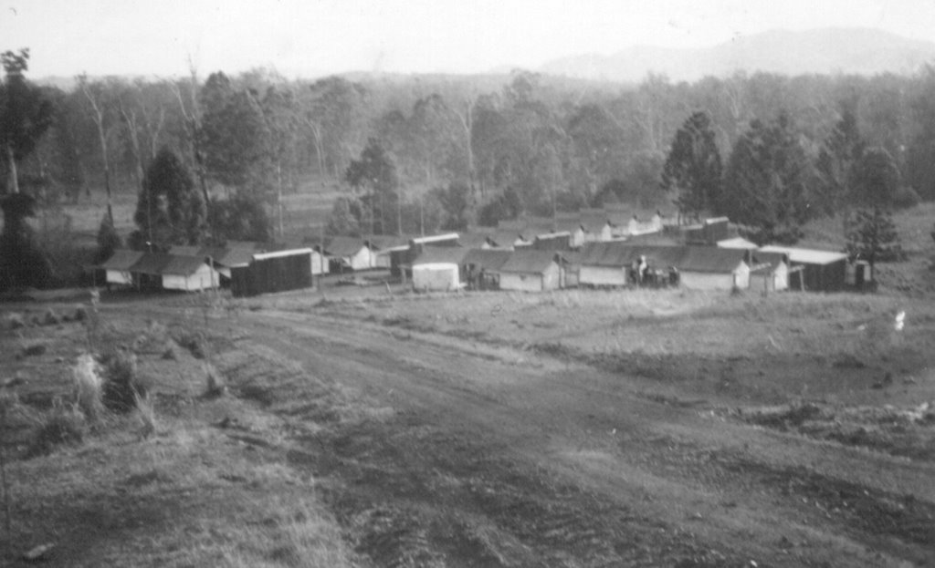 Derrier Camp, Imbil State Forest, 1950