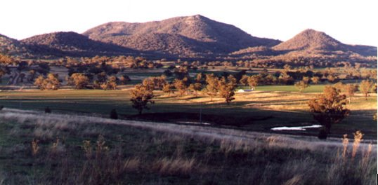 Mt Warragundi viewed from Werris Creek