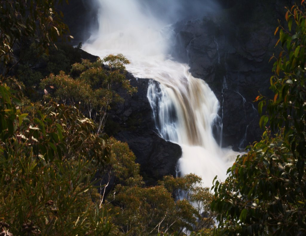 Tia Falls during flood