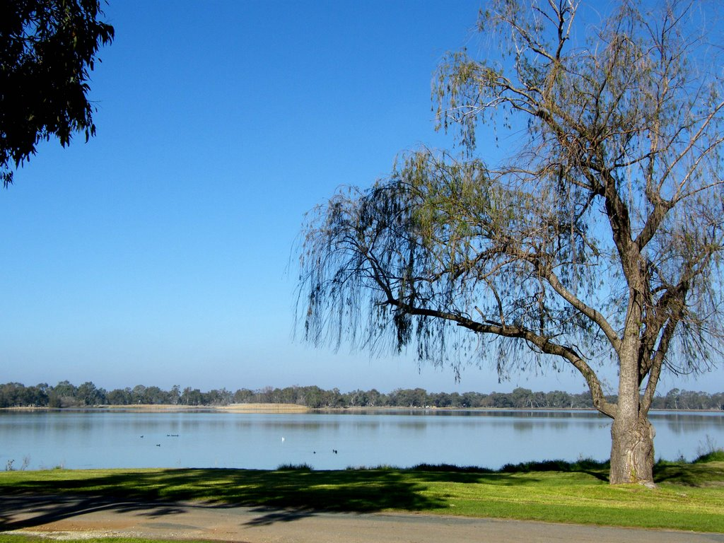 Tranquil Lake Boort