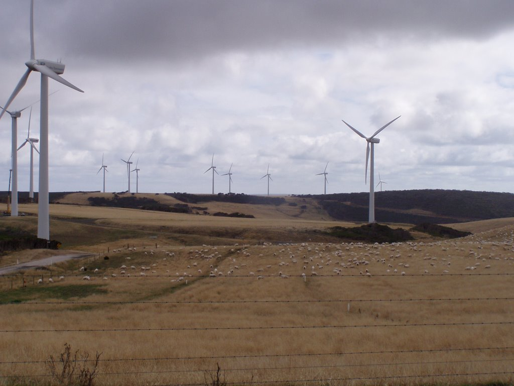 Win Turbines, Woolnorth Power Station