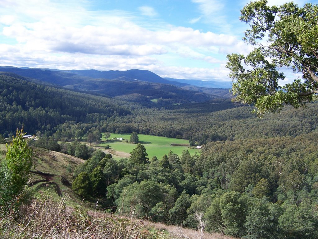Looking towards Mt Baw Baw from a lookout between Neerim Junction & Noojee