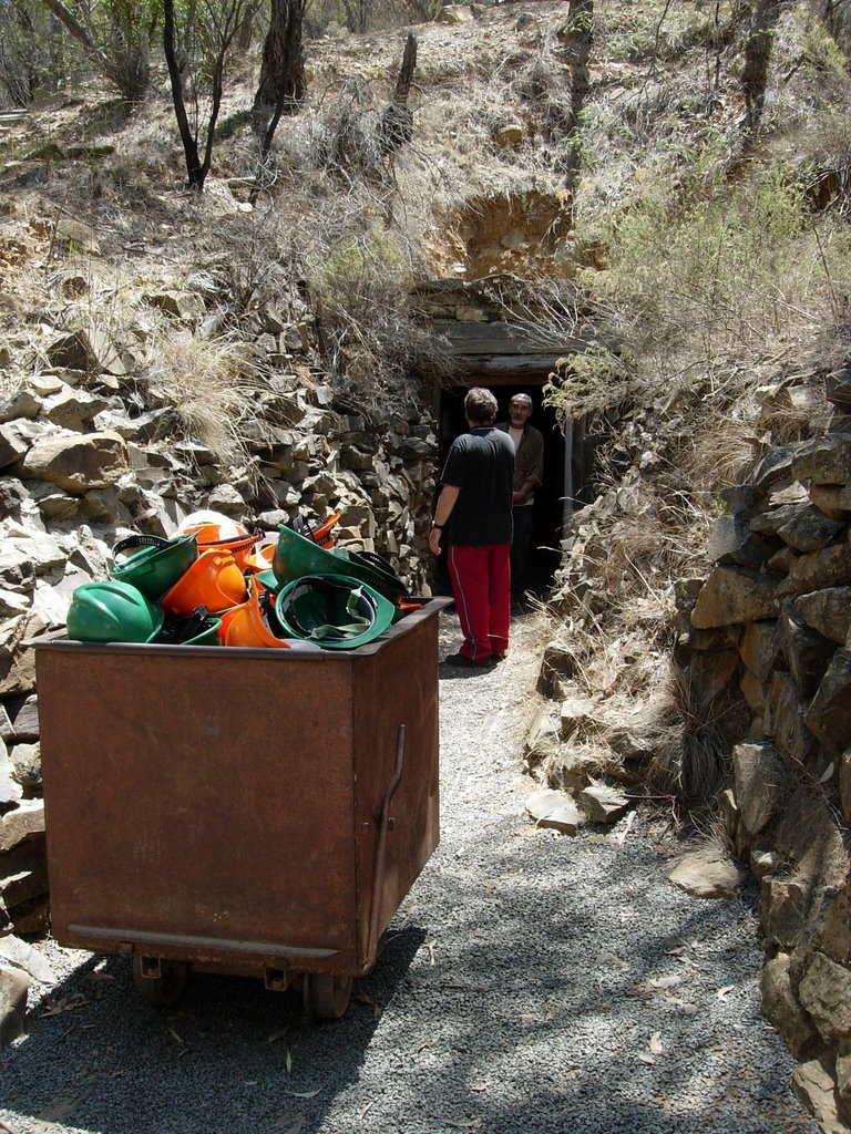 Entrance to the historic Bald Hill Adit gold mine.