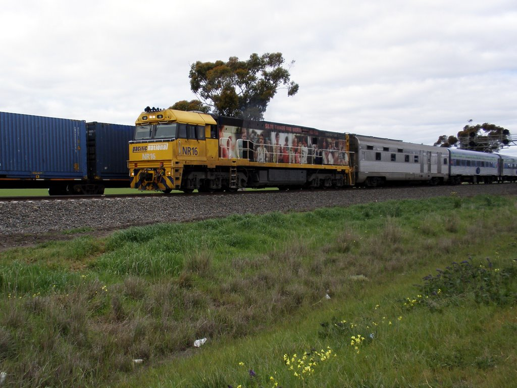 The Overland just outside Kiata (2009). This is the passenger service between Adelaide and Melbourne