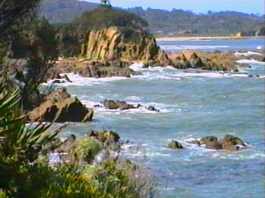 Coast, Mossy Point