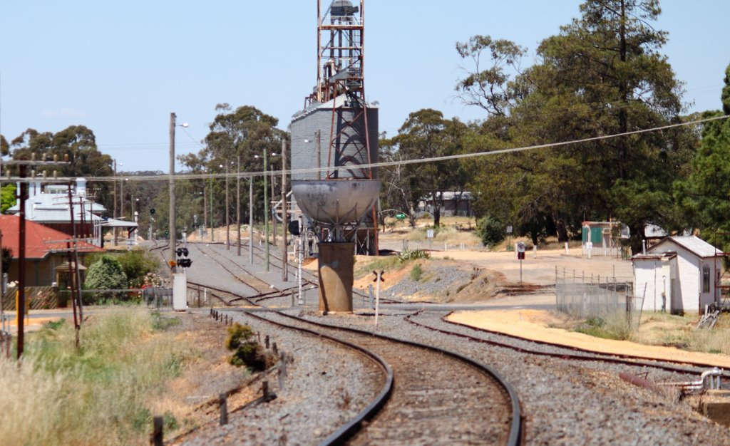 St Arnaud Railways