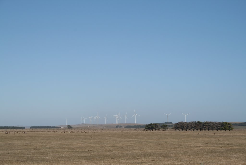 Codrington - Wind Farm