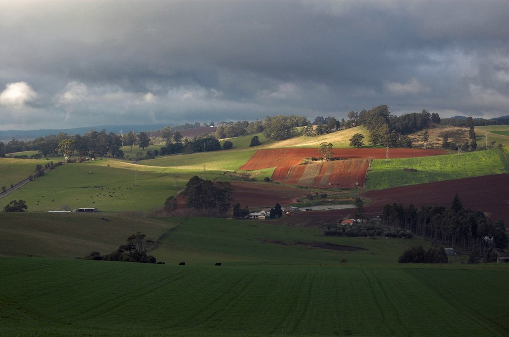 Abbotsham countryside from Top Gawler Road