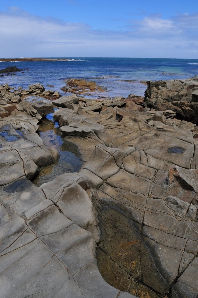 Cape Paterson ,rocks at low tide
