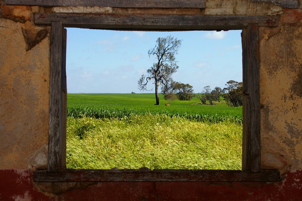 View from side window of Ruin overlooking Lake Albacutya, in the north west of Victoria, Australia.