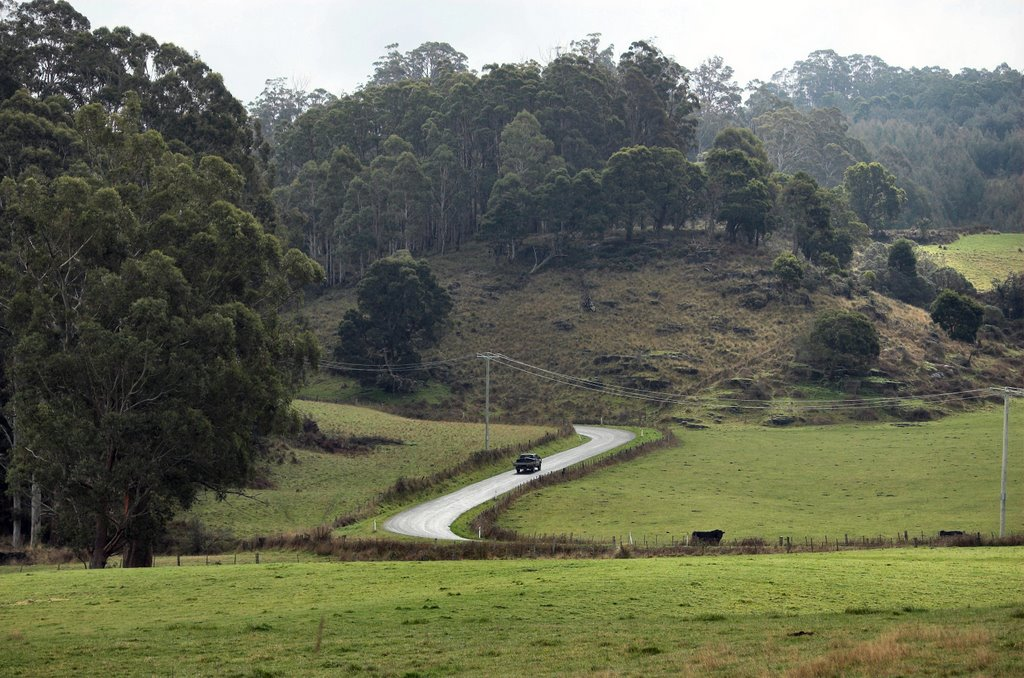 Caveside Road, south of Mole Creek