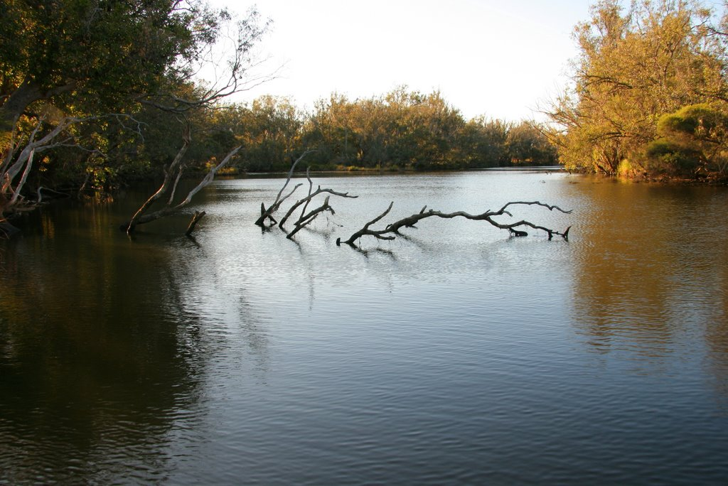 Murray River, Ravenswood.
