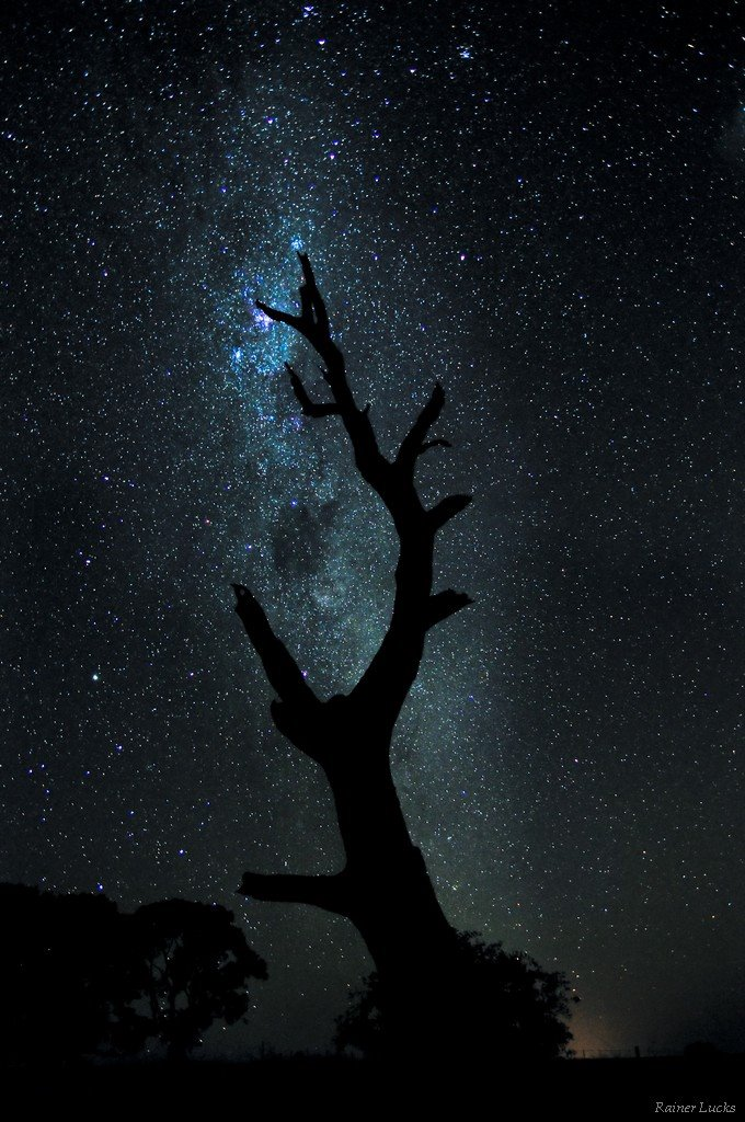 Eden Valley - A Star amongst Stars